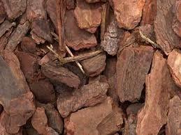 Substrato Casca de Pinus/Carvão TAM. 3 (1kg)