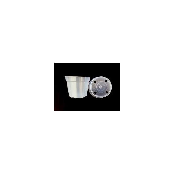 Vaso Transparente - Pote 12